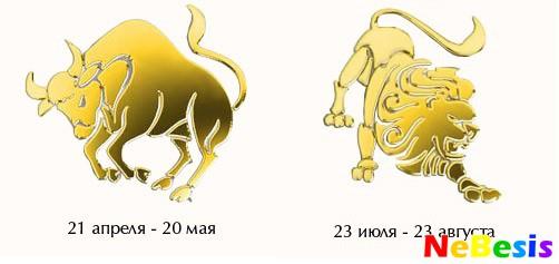 zhenshina-lev-i-muzhchina-vesi-eroticheskiy-goroskop