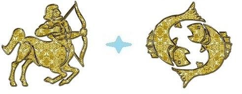seksualnaya-sovmestimost-ribi-i-strelets
