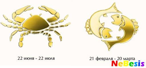 zhirnaya-popa-v-stringah-rakom-foto