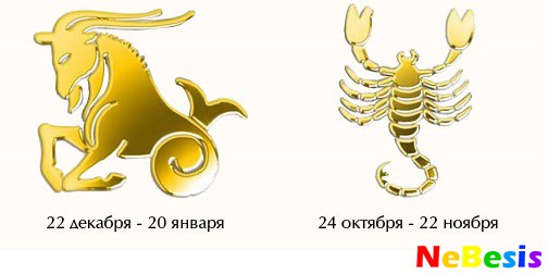 Гороскоп совместимости женщи  козерог и мужчи  скорпион совместимость