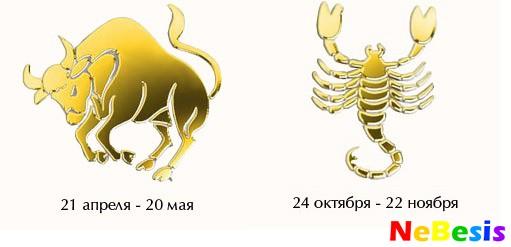 seksualnaya-sovmestimost-kozerog-i-lev
